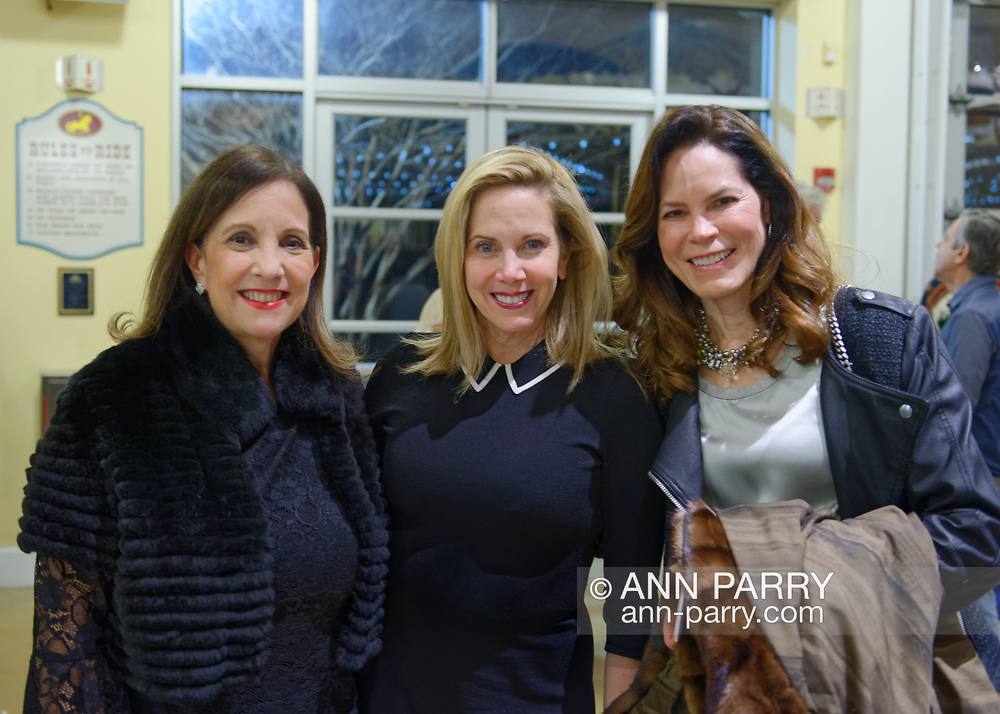 Garden City, New York, USA. March 9, 2019.  L-R, JOANNE ADAMS, Hempstead Town Supervisor LAURA GILLEN, and KELLEY HOCHHEISER, all from Garden City, pose during Unveiling Ceremony of mural by painter Michael White, of close-up of Nunley's Carousel lead horse. Event was held at historic Nunley's Carousel in its Pavilion on Museum Row on Long Island. After speeches by elected officials and members of Baldwin Civic Association and Baldwin Historical Society, and others, people enjoy free carousel rides and food.