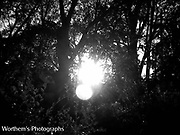 The sun in black & white with the look of an doubled exposed sun for an interesting look.