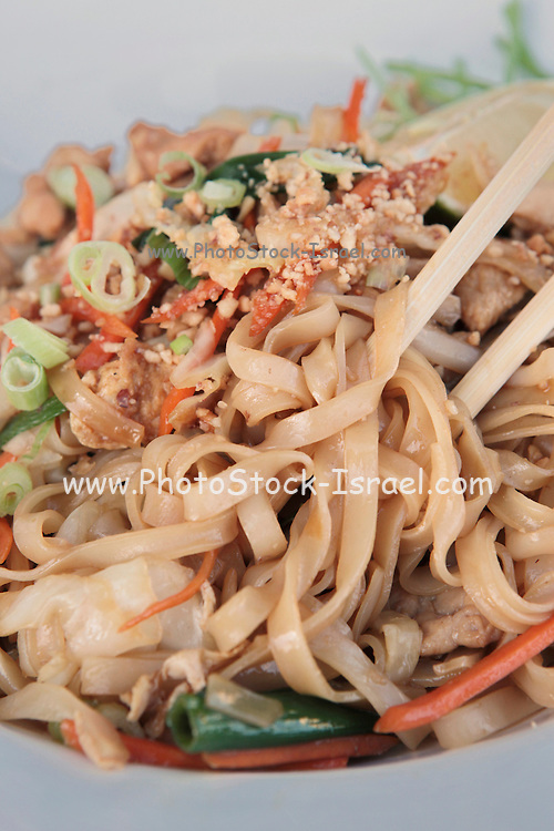 Stir fried Chicken noodles garnished with nuts
