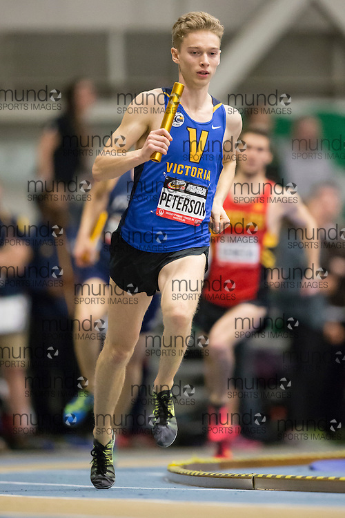 Windsor, Ontario ---2015-03-13--- Cole Peterson of Victoria competes in the 4X800 relay at the 2015 CIS Track and Field Championships in Windsor, Ontario, March 13, 2015.<br /> GEOFF ROBINS/ Mundo Sport Images