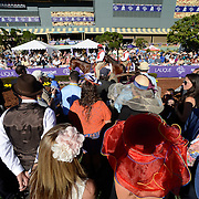Scenes from Santa Anita Park during the 30th running of the Breeders' Cup at the historic track in Arcadia, California on November 1, 2013.