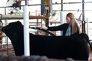 "Tristan Fields, a member of the Cleveland 4-H Club in Pawnee County, truly understands the meaning of the phrase ""Oklahoma Standard."" She, along with her family, donated the $60,000 raised when her steer, El Chapo, was auctioned off at the Oklahoma Youth Expo. The money will go to youth who lost their animal projects in the wildfires that scorched thousands of acres in northwest Oklahoma."