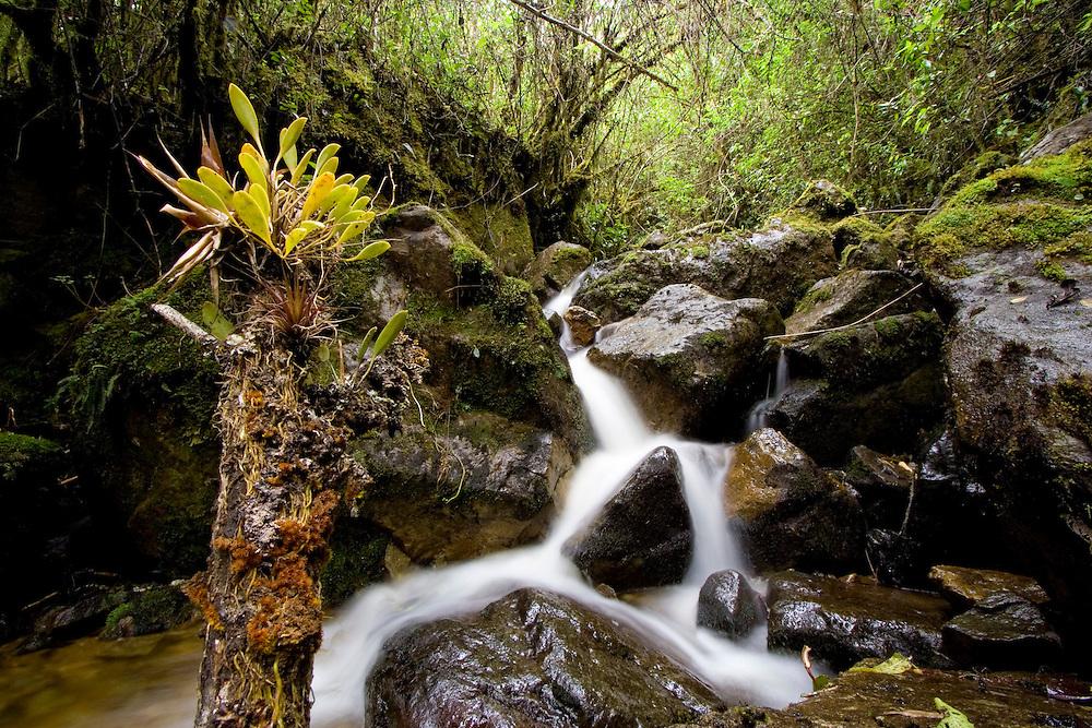 River in southern Ecuador