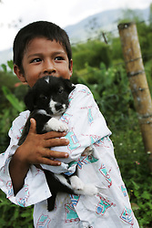 "A small child holds a puppy at the La Cabaña coffee farm,  a hacienda known as a ""museum house"" for its astonishing myriad of antiques. . The tourism industry is slowly emerging in Quindio, the Colombian coffee country.  Old coffee haciendas have been turned into new hotels catering to tourists.  The countryside, some of the most beautiful in the country, is a popular weekend getaway spot where visitors can participate in a variety of outdoor activities as well as learn about coffee production."