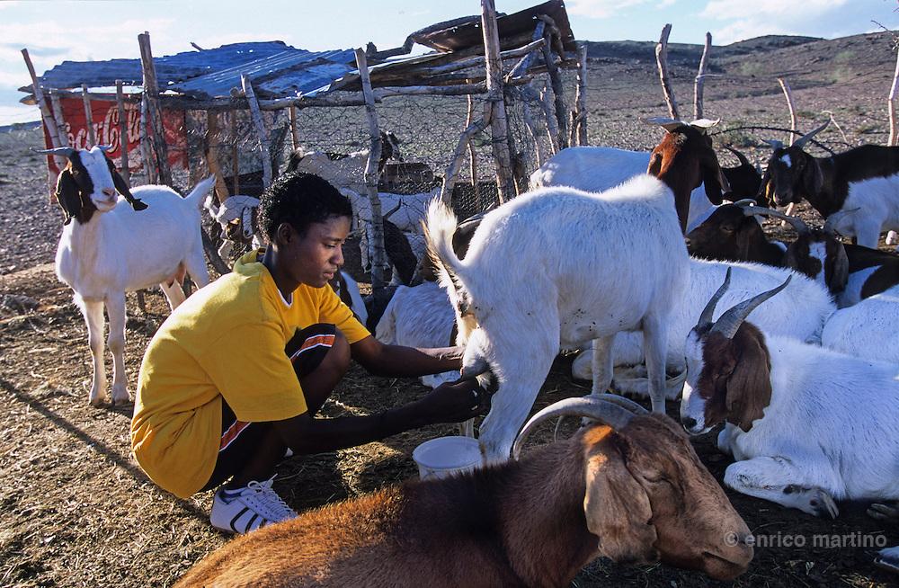 Farmers near Doro Nawas.