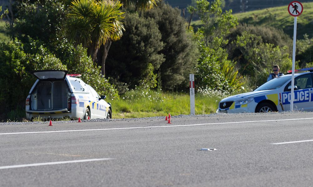 Police are seeking to locate a man who stole a vehicle, rammed a police car and they have since found the car abandoned on Takitimu Drive near to the Tauranga Golf Club, Tauranga, New Zealand, Sunday, November 08, 2015. Credit:SNPA / Cameron Avery