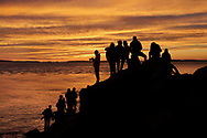 Visitors and photographers enjoying a spectacular sunset that sprang forth unexpectedly from an overcast and rainy evening at the Bass Harbor Head Light, Acadia National Park, Maine, USA
