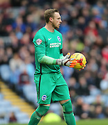 Brighton goalkeeper, David Stockdale (13) during the Sky Bet Championship match between Burnley and Brighton and Hove Albion at Turf Moor, Burnley, England on 22 November 2015.