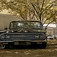 A cool cruiser 1960 Chevy Impala under trees in USA