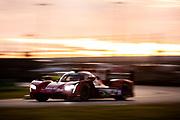 January 22-26, 2020. IMSA Weathertech Series. Rolex Daytona 24hr. #31 Whelen Engineering Racing Cadillac DPi, DPi: Pipo Derani, Filipe Albuquerque, Mike Conway