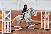 53 - 12th Oct - Evening Show Jumping