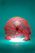 glass boll with red net draped over it