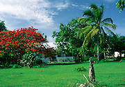 Grand Cayman, Cayman Islands, British West Indies,