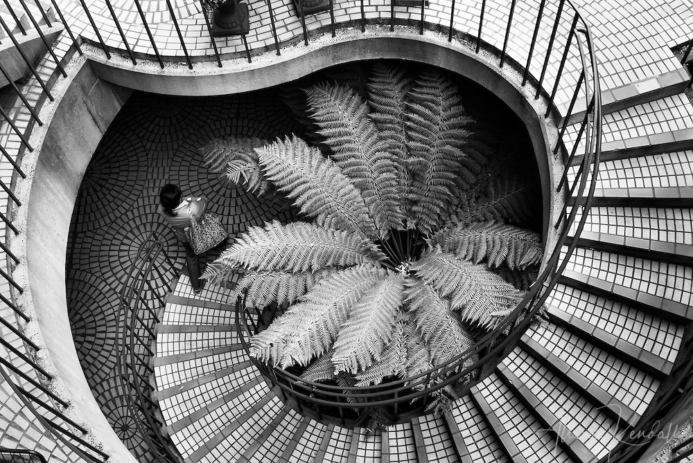 architectural detail photography. architectural urban detail a woman walks down spiral staircase in downtown san francisco fine photography