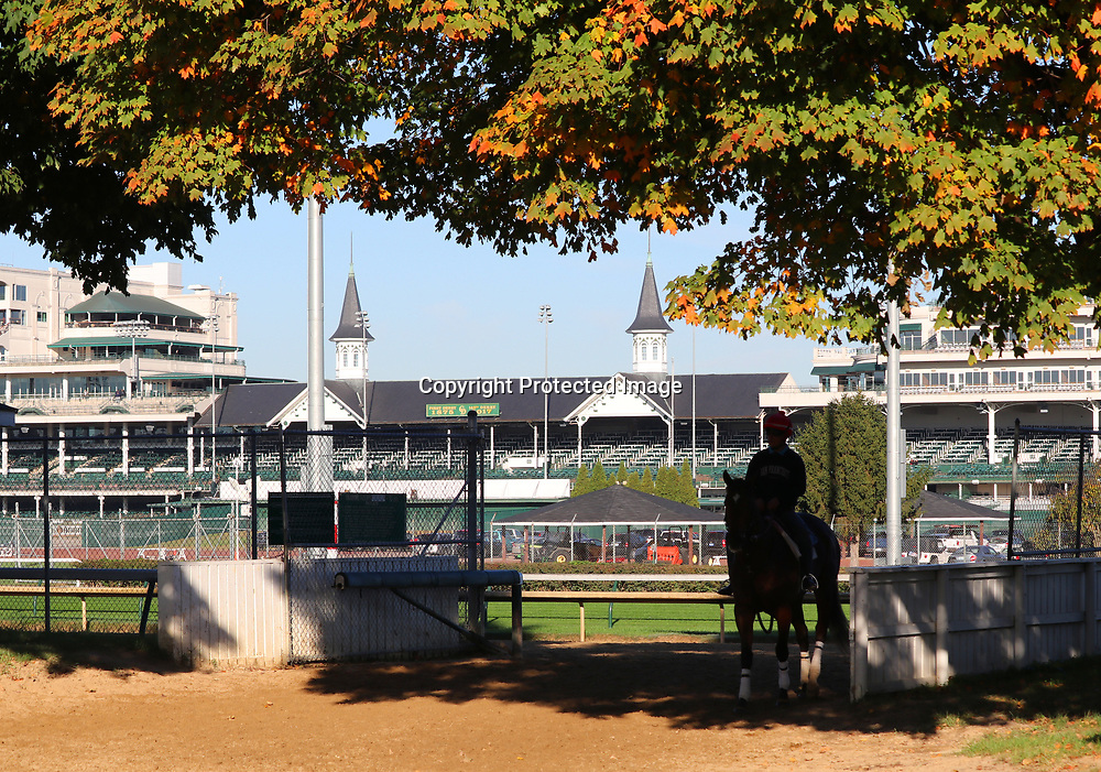 An exercise rider returns from a workout on a crisp fall morning at Churchill Downs