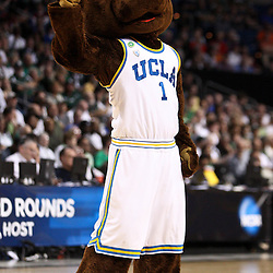 Mar 17, 2011; Tampa, FL, USA; UCLA The Bruins mascot during the first half of the second round of the 2011 NCAA men's basketball tournament against the Michigan State Spartans at the St. Pete Times Forum.  Mandatory Credit: Derick E. Hingle