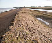 Shingle beach at East Lane, Bawdsey, Suffolk, England, UK