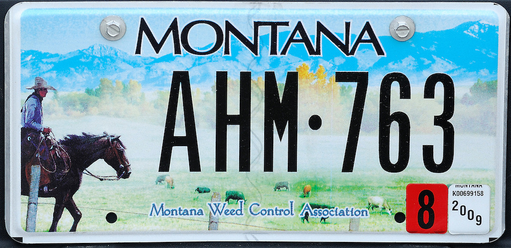 Car License plate, Montana, USA