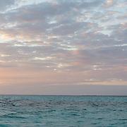 Stingray City at sunrise. Grand Cayman Island.