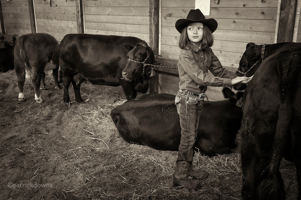 Cowgirl showing some love to the cows in the barn at the Clallam County (WA) fair.