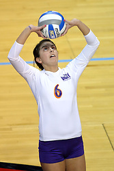 06 November 2010: Jen Murphy lines up a set during an NCAA volleyball match between the Purple Aces of the University of Evansville and the Illinois State Redbirds at Redbird Arena in Normal Illinois.