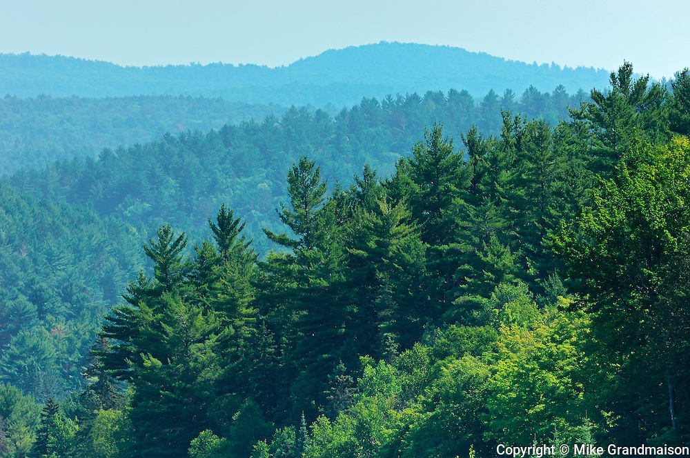 Algonquin hills as seen from a high vantage point<br /> Algonquin Provincial Park<br /> Ontario<br /> Canada