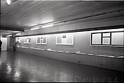 """25/06/1965<br /> 06/25/1965<br /> 25 June 1965<br /> Views of the I.C.I. (Imperial Chemical Industries) """"Vymura"""" wallpaper exhibition at the Building Centre, Baggott Street, Dublin."""
