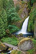 Wahclella Falls, Columbia River Gorge National Scenic Area, Oregon.