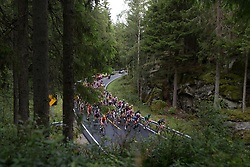 The peloton rides through a forest on Stage 2 of the Ladies Tour of Norway - a 140.4 km road race, between Sarpsborg and Fredrikstad on August 19, 2017, in Ostfold, Norway. (Photo by Balint Hamvas/Velofocus.com)