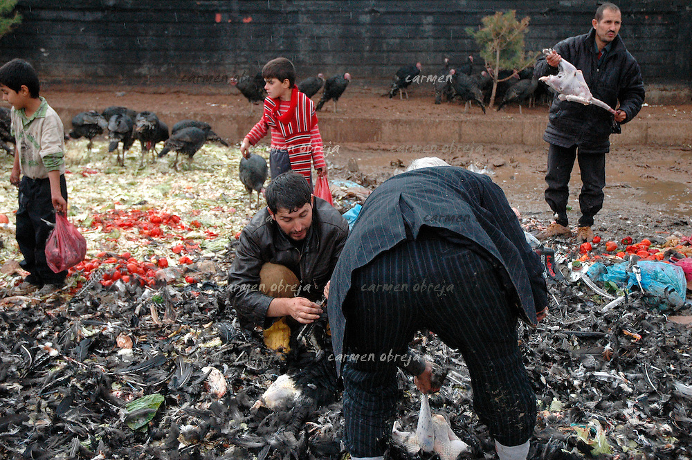 market scene in Dijarbakir. men and boys are hand-defeathering poultry according to the clients on the spot.