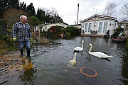 ***TODAY PICTURE***© Licensed to London News Pictures. 12/02/2014. Sunbury, UK Flooding in FORDBRIDGE CARAVAN PARK in SUNBURY in Surrey today 12th February 2014 after the River Thames burst its banks. The Environment Agency has issued 14 Severe Flood Warnings alone the Thames. Photo credit : Stephen Simpson/LNP