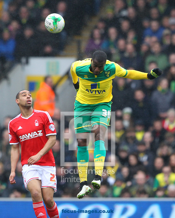 Sebastien Bassong of Norwich wins a header during the Sky Bet Championship match at Carrow Road, Norwich<br /> Picture by Paul Chesterton/Focus Images Ltd +44 7904 640267<br /> 21/03/2015