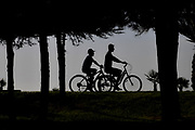 Silhouette of bicycle riders cycling in a park