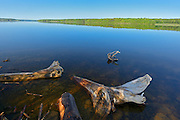 Driftwood along the Saint John River <br /> Mactaquac Dam<br /> New Brunswick<br /> Canada