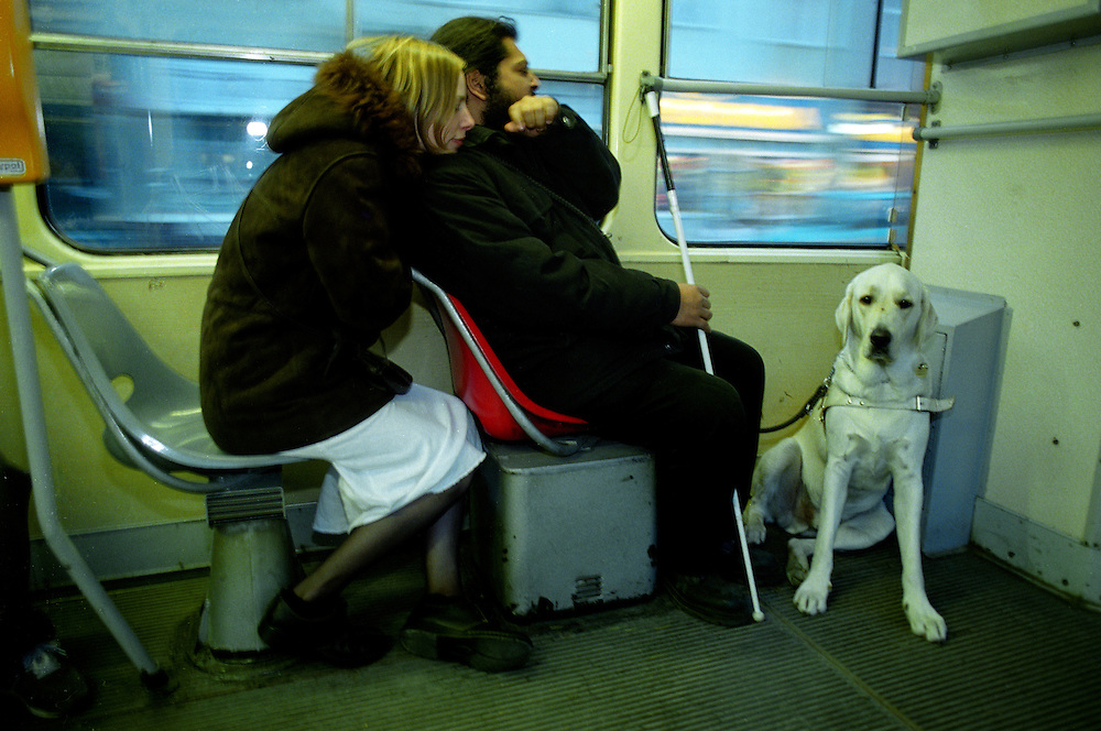 Blind Roma musician Mario Bihari with Alenka and his guiding dog Harley in a Prague tramway.