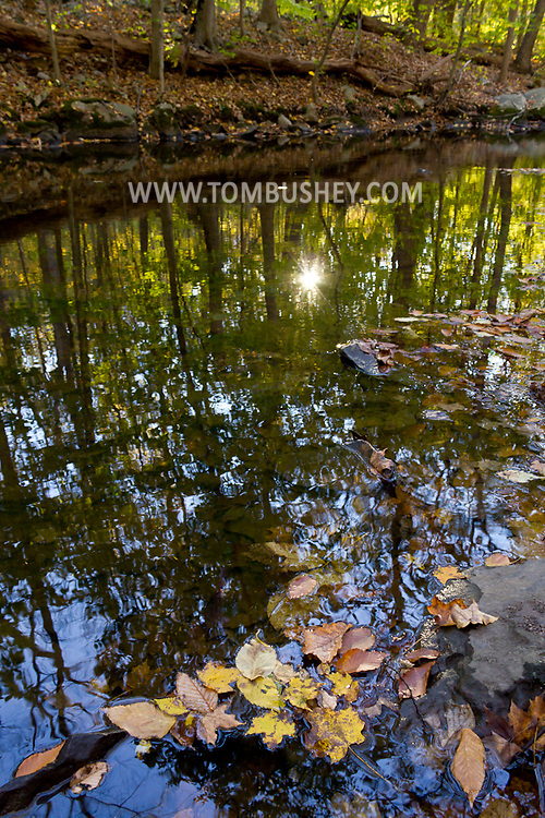 Scotchtown, New York - Autumn leaves in a stream at Highland Lakes State Park on  Oct. 16, 2012.