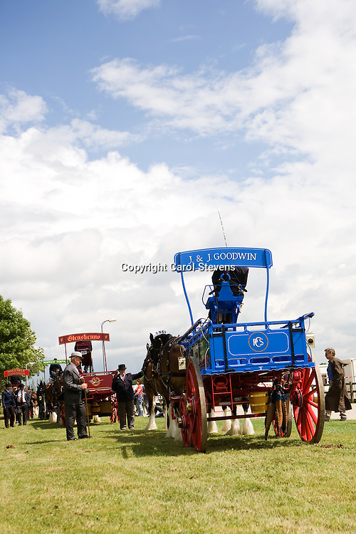 Heavy Horse Team Turnouts  <br /> Great Yorkshire Show 2010