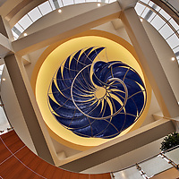 Art - DCH Cancer Center 02 - Tuscaloosa, AL