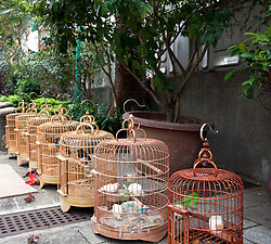 Birds in cages for sale at entrance to the Bird Market, Hong Kong, China.
