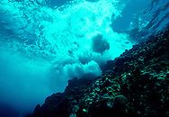 View just under the surface of a wave breaking over a coral head. Saba