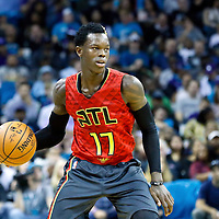 01 November 2015: Atlanta Hawks guard Dennis Schroder (17) dribbles during the Atlanta Hawks 94-92 victory over the Charlotte Hornets, at the Time Warner Cable Arena, in Charlotte, North Carolina, USA.