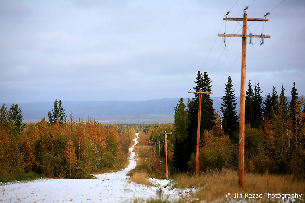CANADA ALBERTA SLAVE LAKE 10OCT09 - Power line poles next to a track through the Boreal forest east of Peace River in northern Alberta, Canada...Significant deposits of Bitumen, also known as tarsands have been found in the area around Peace River and Slave Lake, thus threatening the continued existence of flora and fauna of the Boreal through oil and gas developments...The Canadian boreal region represents a tract of land over 1,000 kilometres wide separating the tundra in the north and temperate rain forest and deciduous woodlands that predominate in the most southerly and westerly parts of Canada. ..The boreal region contains about 14% of Canada's population. With its sheer vastness and integrity, the boreal makes an important contribution to the rural and aboriginal economies of Canada, primarily through resource industries, recreation, hunting, fishing and eco-tourism...Photo by Jiri Rezac / GREENPEACE