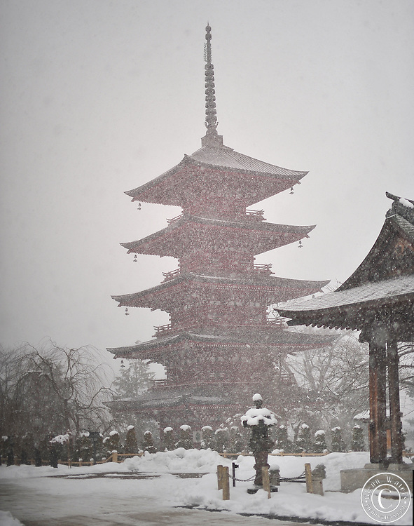 Gojunoto pagoda in a snow storm. Hirosaki in northern Japan.