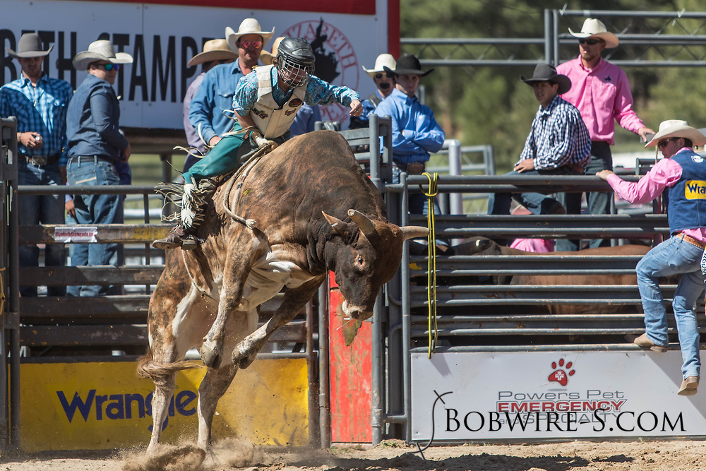 Bull rider Adam Cook rides Salt River Rodeo's 8B Broken Halos in the first performance of the Elizabeth Stampede on Saturday, June 2, 2018.