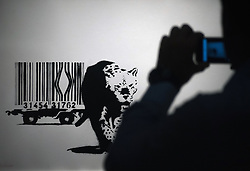 May 23, 2019 - Malaga, Spain - A man seen taking photos of a painting during the exhibition..'Bansky The art of Protest' at cultural center 'La Térmica' is an exhibition showing for the first time in Malaga. the work of famous and mysterious British street artist 'Bansky', display more than 40 creations such originals works, sculptures, videos and photographs provide by international private collections including the original print of ''Niña con globo' (Credit Image: © Jesus Merida Luque/SOPA Images via ZUMA Wire)