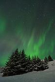Aurora & Nightsky