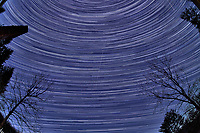 Winter Nighttime Sky Over New Jersey. Composite star trail image (02:44-05:59) taken with a Nikon D850 camera and 8-15 mm fisheye lens (ISO 800, 15 mm, f/8, 30 sec). Raw images processed with Capture One Pro and the composite created with Photoshop CC (statistics, maximum).