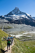 Mountain bikers carry bicycles up steep Höhbalmen Höhenweg trail, below Ober Gabelhorn (4063 m/13,330 ft) and Arben Glacier in the Pennine/Valais Alps, Switzerland, Europe. From Zermatt, hike the scenic Höhbalmen Höhenweg loop via Bergrestaurant Edelweiss, Trift Hut and Zmutt. With delightful views, this strenuous loop accumulates 1200 meters vertically, up and down over 21.6 km (13.4 miles). For licensing options, please inquire.