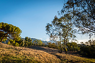 Southern California mountain and pasture.