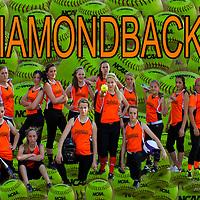 6-10-14 Diamondbacks 2014